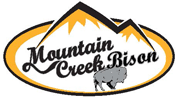 Mountain Creek Bison