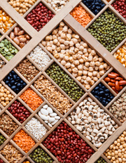 Pulses, Cereals and Oilseeds