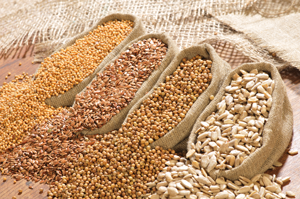 Clean, Bagged Food Grains