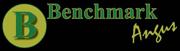 Benchmark Angus