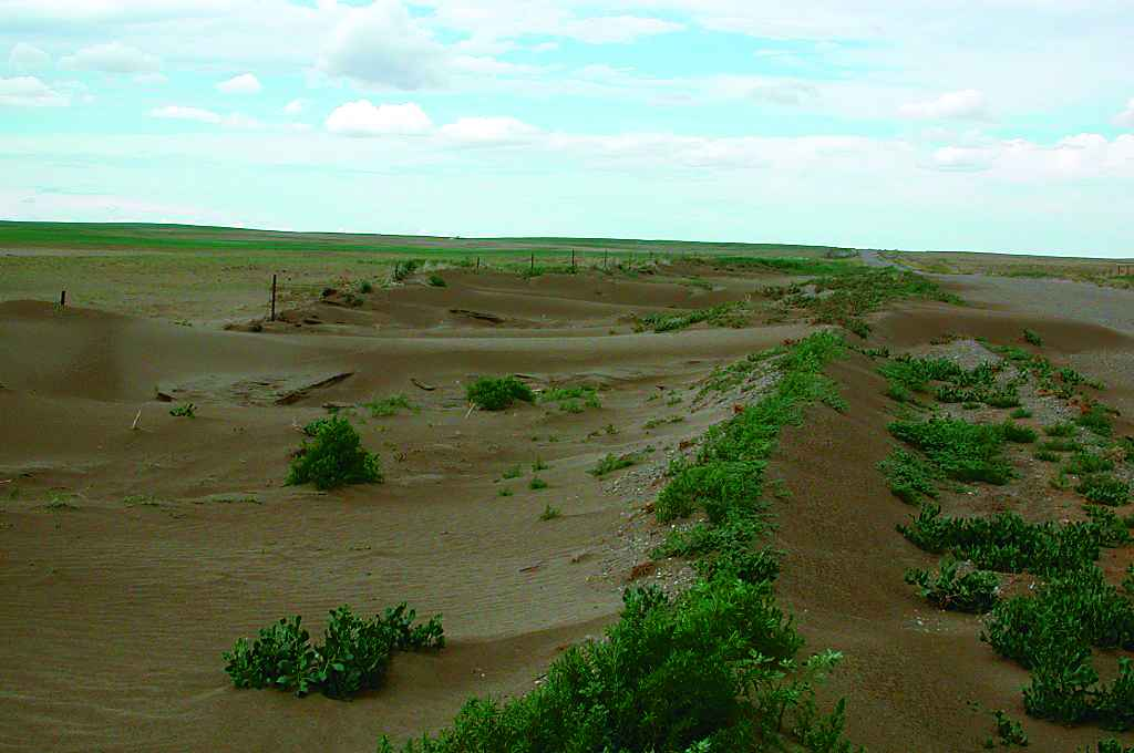 Beneficial management practices environmental manual for crop photo 2 2 2 erosionlg sciox Gallery