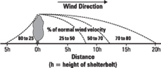 Figure 1. Approximate reduction of wind velocity by a single-row shelterbelt.