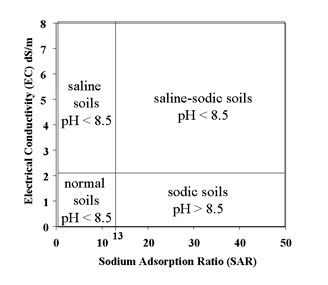 Figure 2. Classes of salt-affected soils
