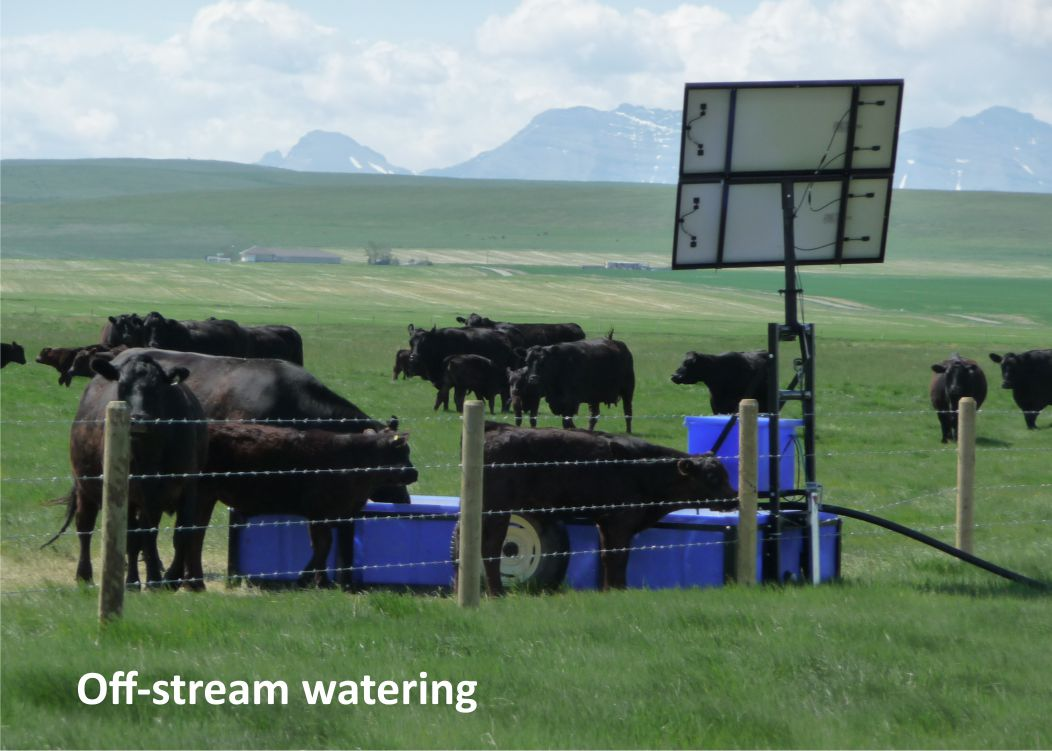 Off-stream watering