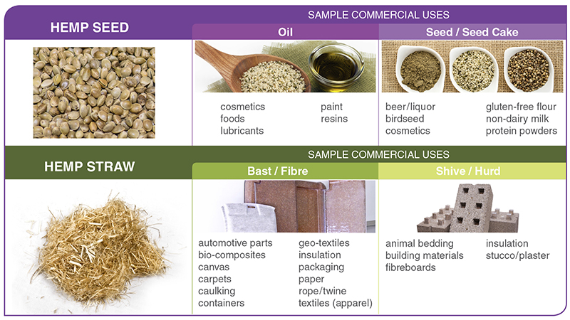 Figure 3. List of sample industrial hemp products